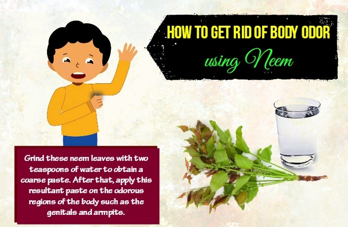 How To Get Rid Of Odor Amazing Five Ways To Get Rid Of