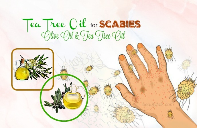 tea tree oil for scabies