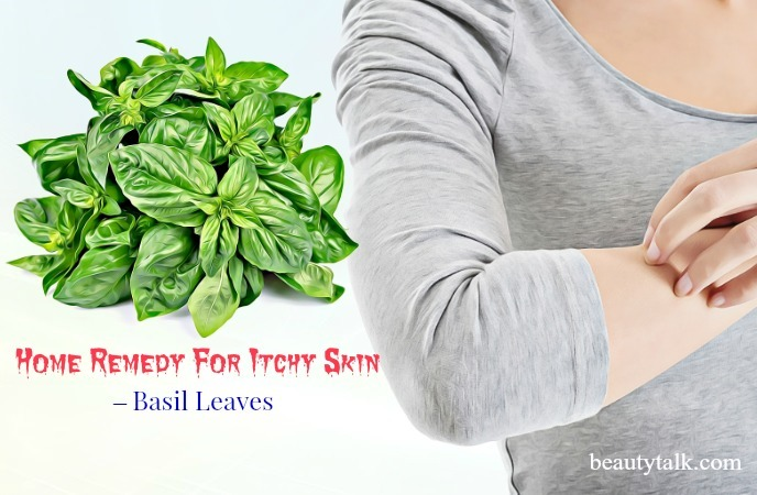 home remedies for itchy skin - basil leaves