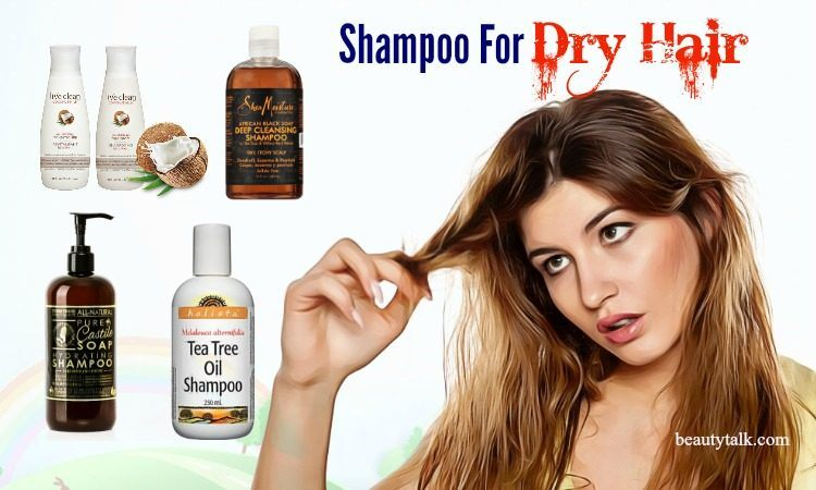 shampoo for dry hair and dandruff